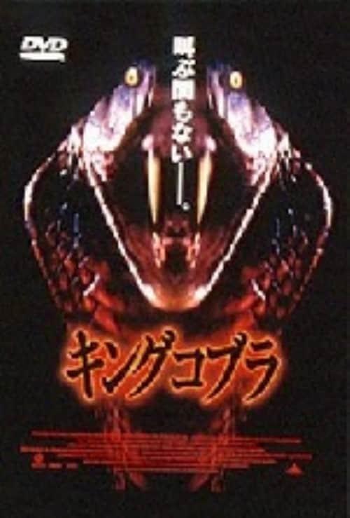 【中古】キングコブラ 【DVD】/ノリユキ・パット・モリタ