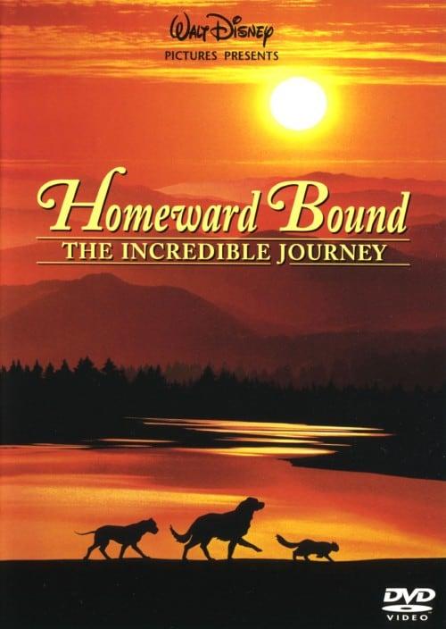 【中古】奇跡の旅 【DVD】/ロバート・ヘイズ