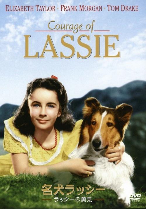 【中古】名犬ラッシー/ラッシーの勇気 【DVD】/エリザベス・テイラー