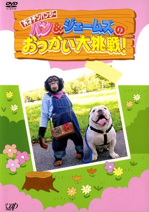 【中古】天才!チンパンジー パン&ジェームズのお使い大挑戦 【DVD】