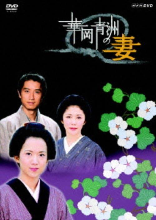 【中古】華岡青洲の妻 (2005) 【DVD】/和久井映見