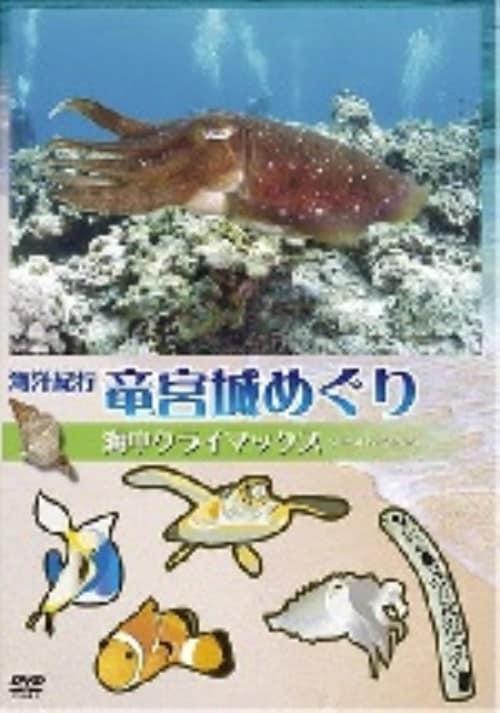 【中古】4.海洋紀行・竜宮城めぐり 驚異の海中… 【DVD】