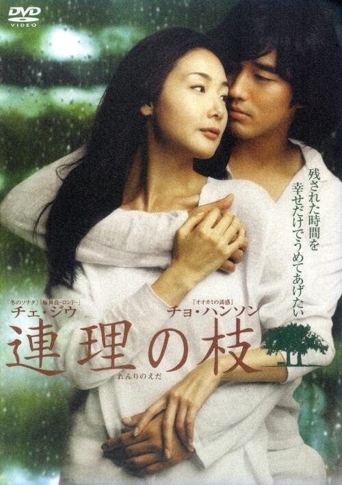 【中古】連理の枝 【DVD】/チェ・ジウ