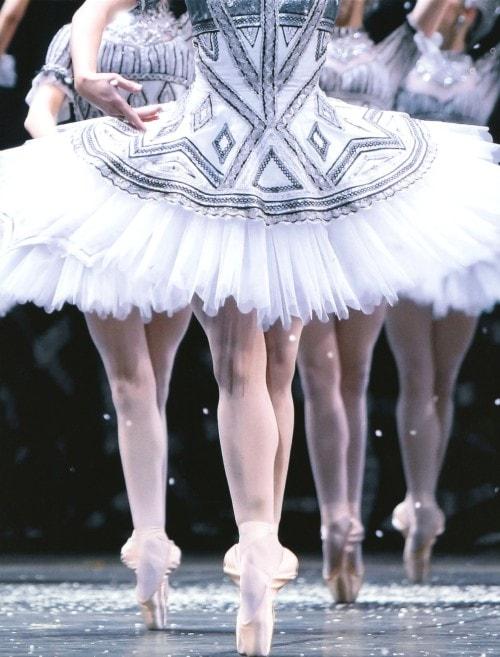 【中古】初限)パリ・オペラ座のすべて 【DVD】